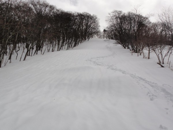 柳沢峠付近